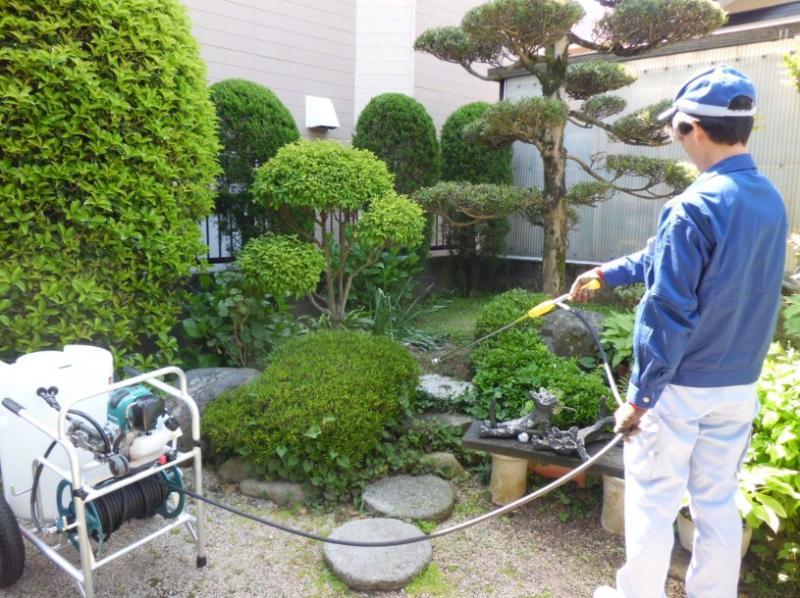 6月のお庭の手入れ…『消毒作業』