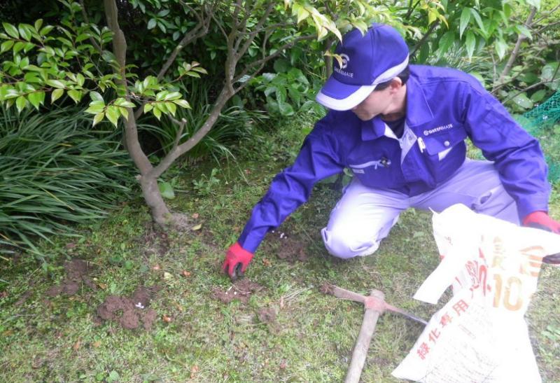 一月のお庭のお手入れ 『寒肥』と『害虫の卵駆除』