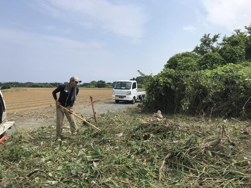 竹林伐開工事