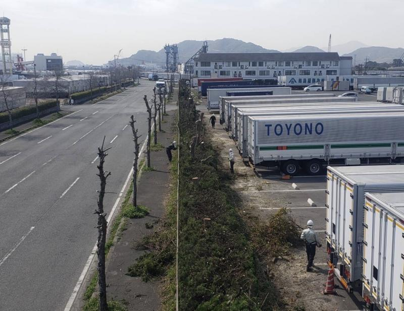 """<strong>全長1000mの生垣刈込 </strong><br>高所作業車を用いて刈込剪定<br><br><br><span style=""""font-size: x-large;""""><span style=""""font-size: medium;""""><br></span></span>"""