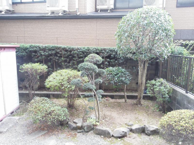 キンモクセイ剪定(3〜5m)、ツゲ剪定(3m以下)、マキノキの生垣刈込み(高さ1〜2m・長さ9m)、植込み低木刈込み(高さ1m以下 10平方メートル)、草むしり(10平方メートル)